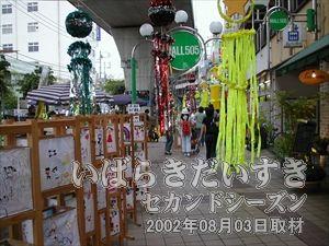 【モール505】<br>亀城公園からモール505まで戻ります。こちらの会場でもお祭りに花を咲かせます。