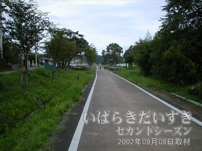 【常陸藤沢駅 ホーム】筑波鉄道の駅跡、ホーム跡は、木々に囲まれるような場所にあるような気がします。