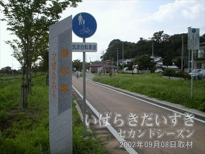 【藤沢駅の石標】現在では「常陸藤沢駅」ではなく、「藤沢駅」と呼んでいるようです。