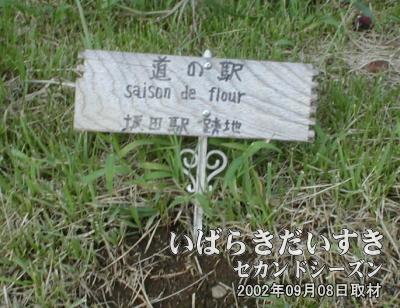 【坂田駅跡地の標】坂田駅ホーム上には、お手製の、小さな木製の標がぽつんと置かれていました(^^)。