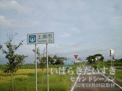 【土浦市】いよいよ土浦市に入ります。遠くにビルが見えてきました。土浦市街地です。
