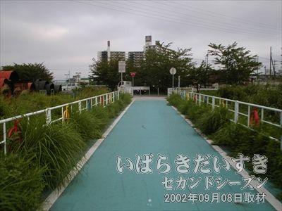 【新川】りんりんロードは、新川があるため途切れます。筑波鉄道が運行されていた頃は橋が架かっており、筑波鉄道は橋を渡っていました。現在、橋は撤去済みです。