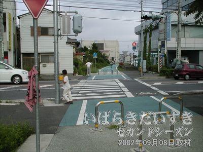 【新土浦駅ホーム】横断歩道に分断されていますが、ここに線路がありました。渡って右手が新土浦駅。