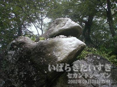 【ガマ口】<br>男体山と女体山の道中にある、ガマの口のような岩。分かりやすいように、白く施されているようです。