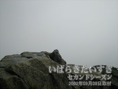 【霧で何も見えません】<br>男体山側でも何も見えなかったのに、女体山側から見えるわけないですよね~。