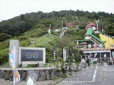 【つつじヶ丘から女体山を見上げる】<br>去年(2001年09月)に続いての訪問。