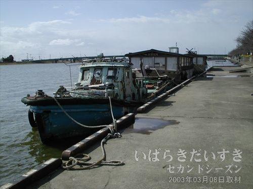 常陸利根川に繋がれた舟<br>繋がれている舟の中には、宴会用の舟も奥にあります。今現在、辺りはひっそりとしています。