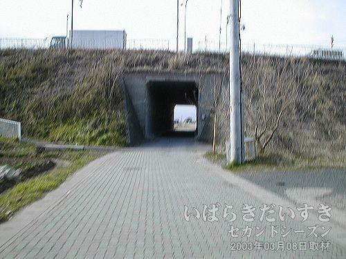 北利根川橋のトンネル<br>トンネルをくぐれば、霞ヶ浦が広がるはずです。