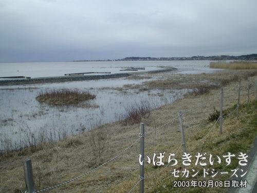 永山消波施設<br>自然の力を有効に利用し、人の手で自然回復を願うプロジェクト。
