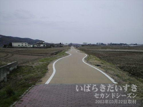 うねうね自転車道<br>紫尾駅を出ると、左右にうねうねする自転車道が現れます。