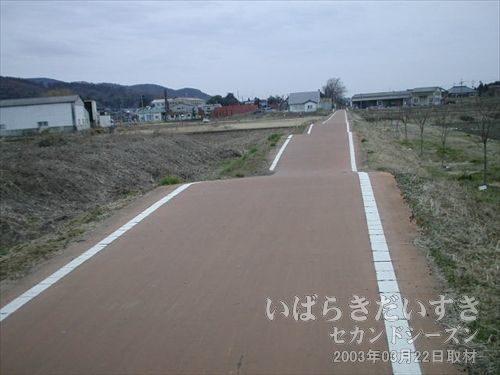こんどは、上下にゆらゆら自転車道<br>筑波鉄道の自転車道で、この区間だけが、こういう変な作りになっています。