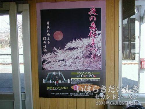 夜の森桜まつりのポスター<br>夜ノ森駅前の桜は有名らしく、一度は行ってみたい。竜田駅駅舎内にて。