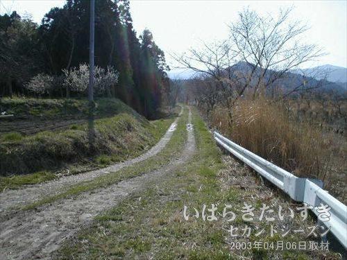 川沿いの道<br>先ほどの橋を渡り、常磐線の線路に向かう為、川沿いを歩いていきます。