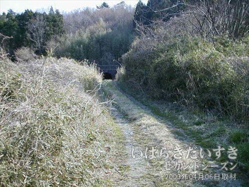!!遠くに見えるのは!?<br>車が通った形跡のある道に出ました。その遠くに見える物は・・・。
