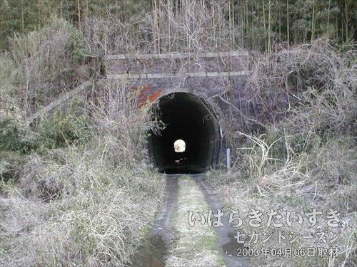 常磐線旧トンネル 東禅寺トンネル(広野駅方面)<br>つ、ついに常磐線の旧トンネルを発見する事ができました~(TT)。