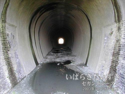 トンネル内部<br>水たまりがあり、決して足場は良くありません。比較的内部が明るいのが救い。