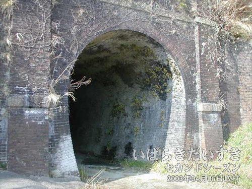 常磐線 旧トンネル 東禅寺トンネル(末続駅方面)<br>旧トンネルを攻略しました! まずは、一個目だぁ~(^O^)9。