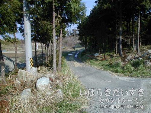 一本の整備されていない道<br>この道を見たとき、何かしら心に響く物を感じました。ので、入ってみます。