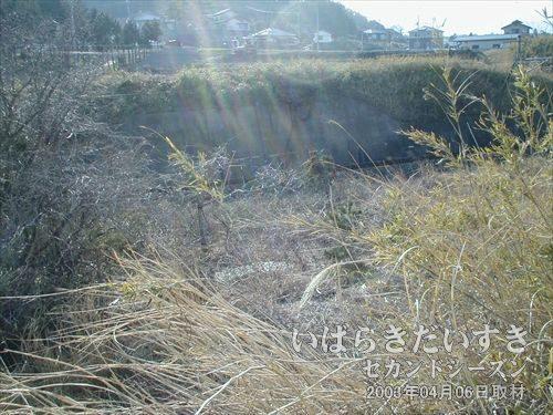 常磐線の旧線路側に下りられそう<br>かき分けられている藪を発見。ここから下の級線路に下りる事ができそうです。