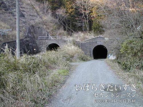 常磐線 旧トンネル 末続トンネル<br>山に向かって歩いていったら、末続トンネルを発見してしまいました! 左が現行トンネル。正面右が旧トンネルです。