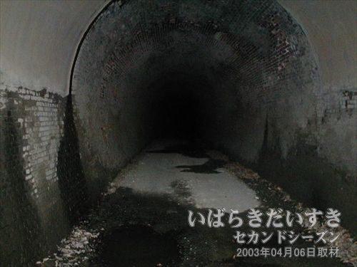 トンネル内部は真っ暗<br>トンネルは全長270mと長く、カーブを描いているので、出口の光が見えません。