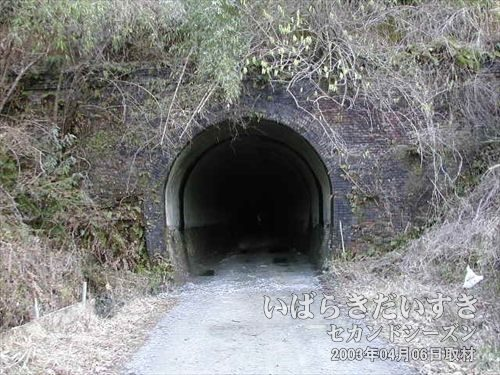 常磐線 旧トンネル 末続トンネル(広野駅側)<br>長いトンネルを抜けました。今回訪れた旧トンネルの中で、最長でしたね。