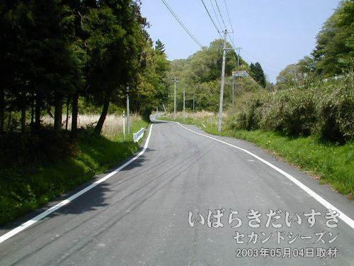 舗装された道<br>前回も通った山道。前回は徒歩でとぼとぼ歩きましたが、今回は自転車なので楽ちん。
