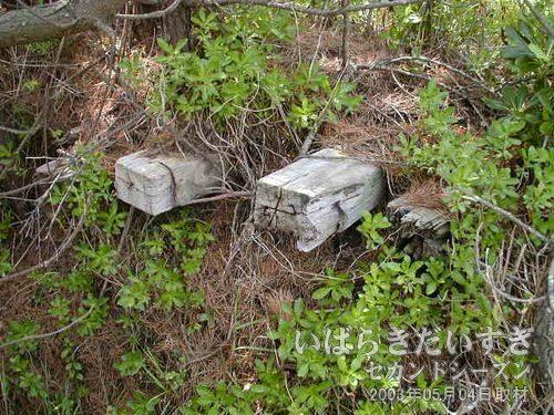 枕木が埋まっている<br>枕木が埋まっている坂道を発見!