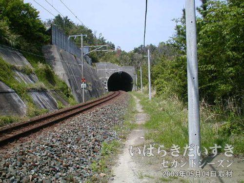 現行 台ノ山トンネル<br>常磐線の線路に出てしまいました。この現行トンネルの右手に、旧トンネルがあるはず。