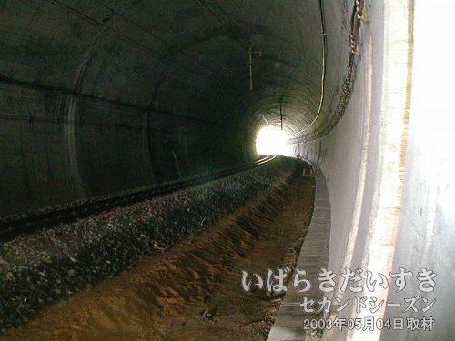 現行の台ノ山トンネル内<br>このトンネル内の線路は単線。複線化できるくらいの幅があり、ゆったりしています。