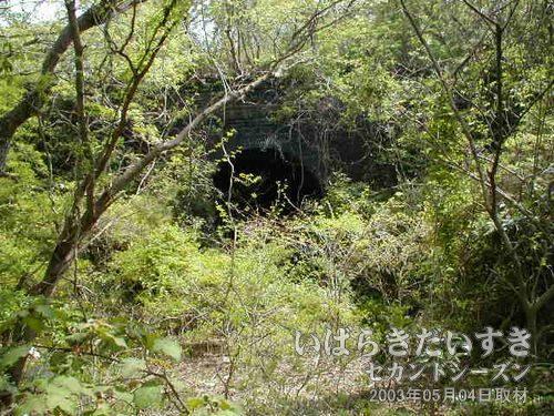 台ノ山トンネル〔広野駅側〕<br>草木に包まれているせいか、海風による劣化が少ない感じ。