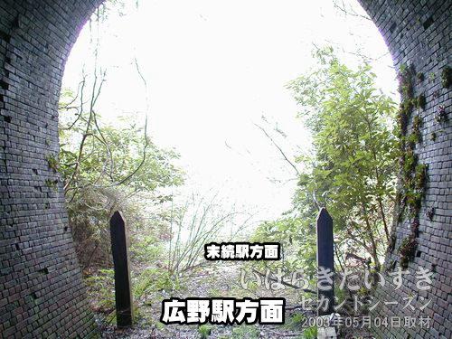トンネル内部から撮影<br>両脇に木(枕木?)が2本立付けられています。何の意味があるのでしょう?
