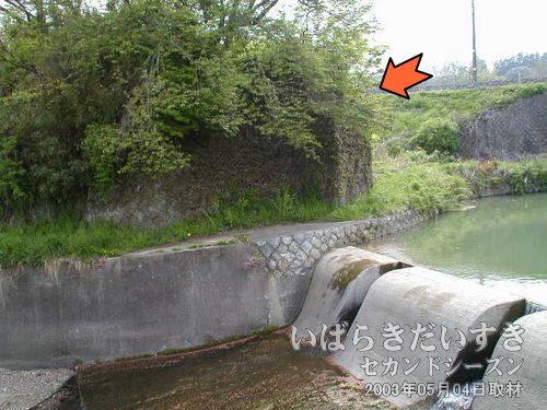 橋げた跡<br>藪の下に、レンガ調の橋げた跡があるのが確認できますでしょうか?