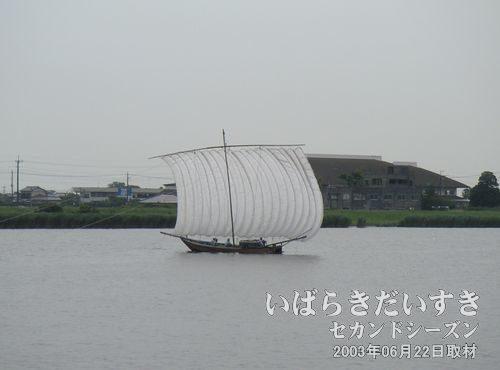 帆曳船観光目的で周航されています。土浦入りでも、観光目的の帆曳船を観ることができます。