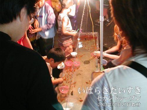 金魚すくい<br>いつの時代も金魚すくいってのは、お祭りの定番ですね。