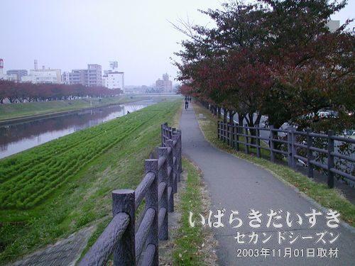 水戸駅方面から、偕楽園方面に歩く<br>千波湖沿いを歩きます。この道を進めば、偕楽園に着きますし、あんこう鍋にも到着します。