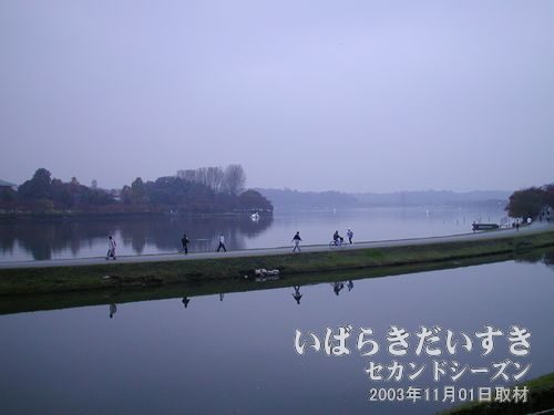 千波湖<br>しばらく歩いていたら千波湖が広がりました。ジョギングをする方や散歩をする方がおられます。