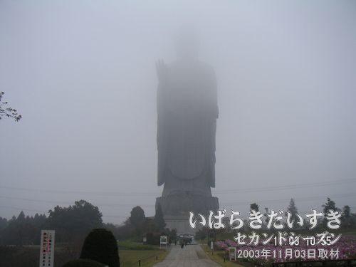 正面からの大仏様<br>霧で隠れてしまって全体が見えませんね~。こんな天気は滅多にありません。