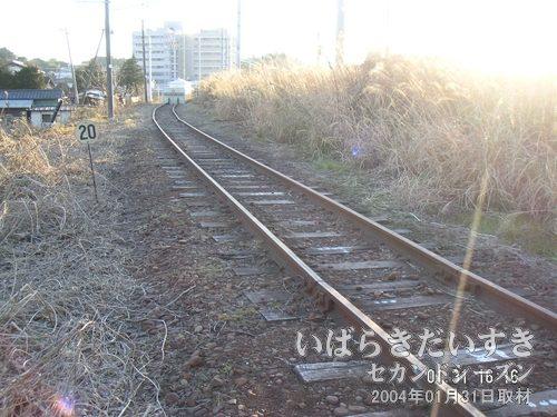 旧線跡を上野方面に歩いていくとストッパー<br>旧線跡は程なくしてストッパーにより終了してしまいました。しかし、その先には。。。