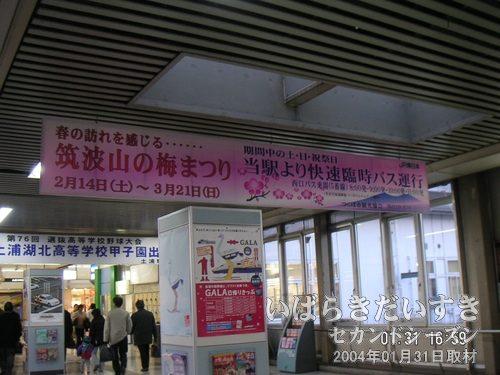 土浦駅までもどってくる<br>土浦駅の跨線橋(自由通路)。来月02月からは、筑波山で梅まつり。土浦駅から筑波山まで快速臨時バスが運行されます。