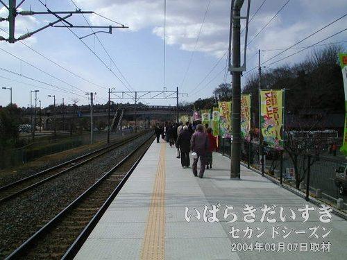 常磐線 偕楽園駅(臨時駅)下りホーム<br>今年も偕楽園駅に降り立ちます。偕楽園駅は年間を通して利用されません。梅まつりだけの臨時駅です。