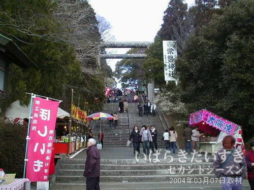 常磐神社の階段、参拝道<br>階段を上り詰めると常磐神社拝殿があります。