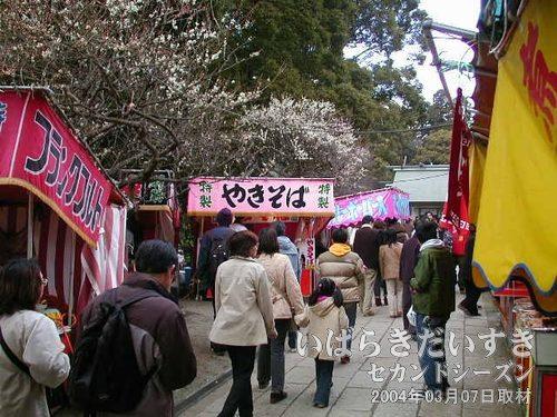 参拝道は出店で賑わう<br>常磐神社の広い境内、参拝道は、多くの出店で賑わいます。