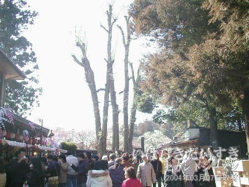 偕楽園 東門前<br>偕楽園にはいくつか門がありますが、一番出入りが多い東門です。左手は偕楽園レストハウス。