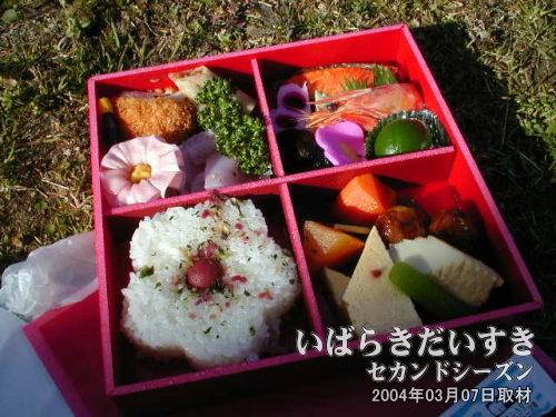 梅づくし弁当<br>1000円で売られているものが500円に値下げ。おトクに食べられると、おいしいものが余計おいしく感じられます(^O^)。