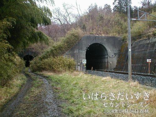 岩迫トンネル<br>右手に大きく見えるのが現行トンネル。左手奥に、旧トンネルがあります。