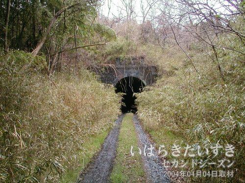 岩迫トンネル(いわき側)<br>現行のトンネルより奥の位置に、藪に包まれるように存在しています。