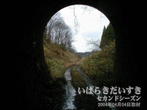 岩迫トンネル通過<br>距離約250mと、微妙に長さのあるトンネルでした。