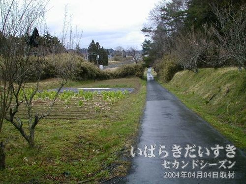 小道に入る<br>メイン道路から小道に入ると、常磐線が左手に沿うようにあります。