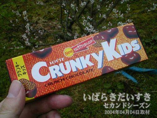 チョコレートで休憩<br>購入してあったチョコを食べて休憩。